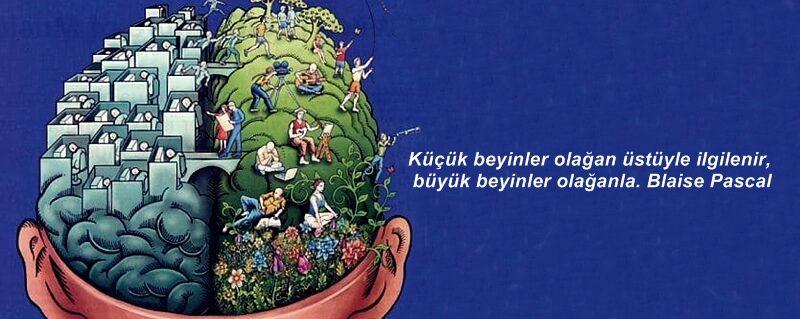 Eğitim Ve Bilim Pınarı & Saklıköy